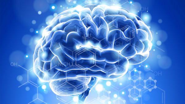 1-Mindconnexion