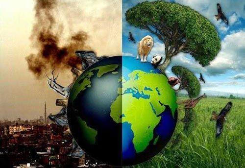 Людський фактор або симптоми хворий планети (фото)