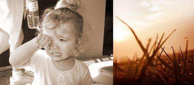 насильство над дітьми в сім`ї