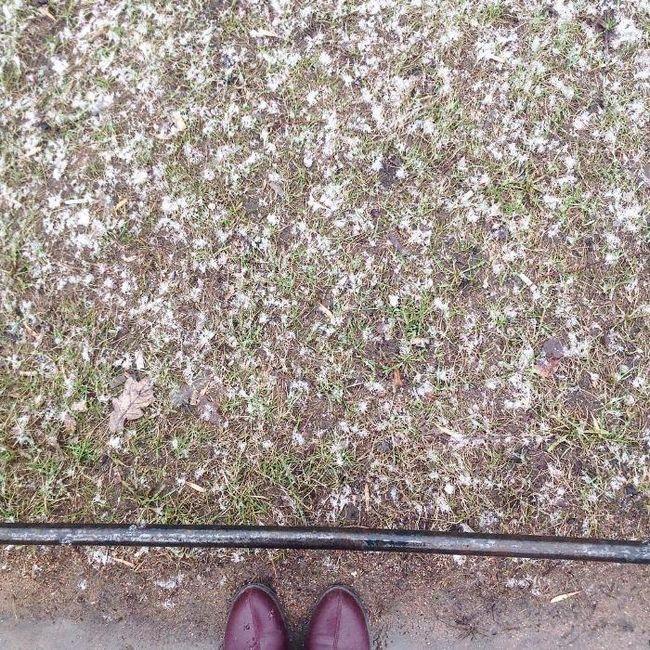 весна в Пітері сніг і таке інше
