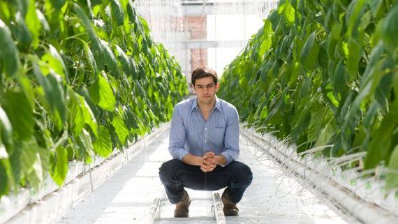 Блог ім. rodovid: Вертикальні сади Вертикальні ферми